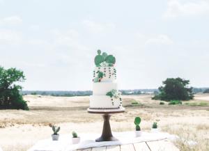Desert, Cactus, Wedding Cake, bruidstaart, vetplant, beach, greenery
